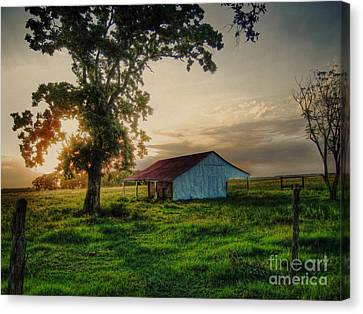 Old Shed Canvas Print by Savannah Gibbs