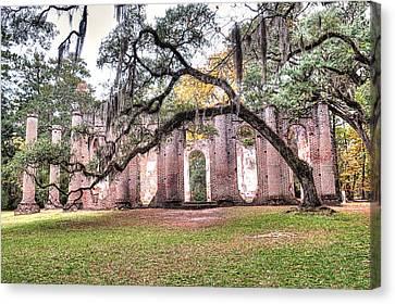 Old Sheldon Church - Bending Oak Canvas Print