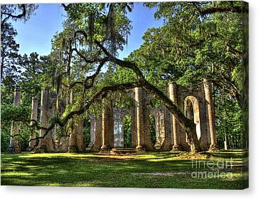 Old Sheldon Church Ruins 2 Canvas Print by Reid Callaway