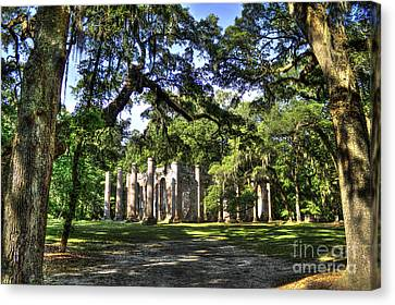 Old Sheldon Church Ruins Near Beaufort Sc Canvas Print by Reid Callaway