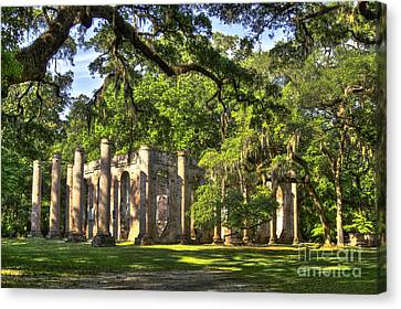 Old Sheldon Church Ruins Canvas Print by Reid Callaway