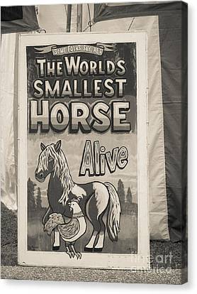 Old Sideshow Poster Canvas Print by Edward Fielding