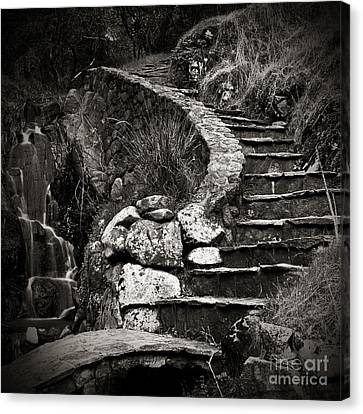 Old Stone Stairway Canvas Print by Charmian Vistaunet