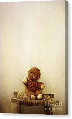 Old Teddy Bear Sitting On Stool Canvas Print by Birgit Tyrrell
