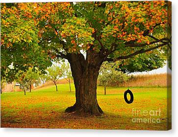 Old Tire Swing Canvas Print by Terri Gostola
