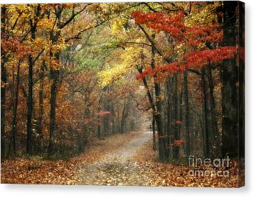 Old Trace Fall - Along The Natchez Trace In Tennessee Canvas Print by T Lowry Wilson
