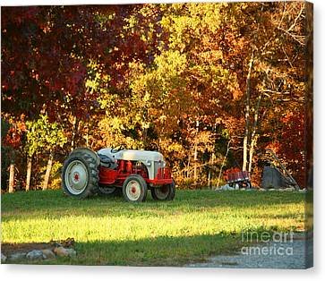Old Tractor In A Carolina Fall Canvas Print by Suzi Nelson