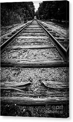Old Train Tracks Canvas Print