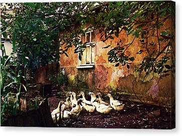 Old Ukrainian Village Canvas Print by Julie Palencia