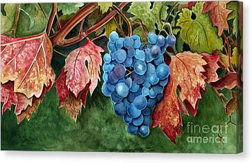 Canvas Print featuring the painting Old Vine Zinfandel by Debbie Hart