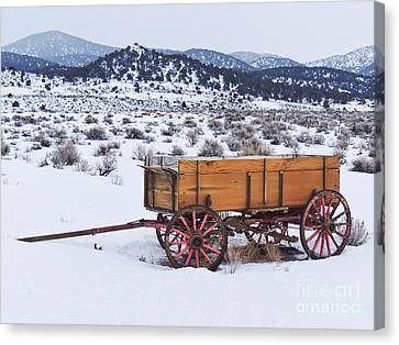 Old Wagon In Snow Canvas Print