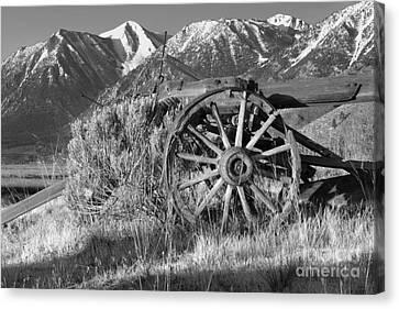 Old Wagon Near Jobs Peak Canvas Print by James Eddy