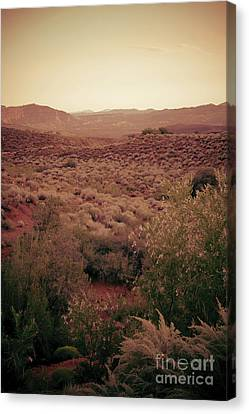 Old West Canvas Print by Kim Marshall