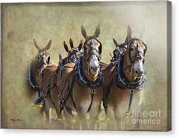Old West Mule Train Canvas Print by Betty LaRue