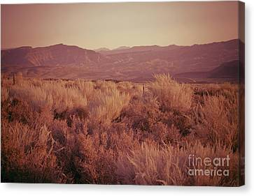 Old West Revisted Canvas Print