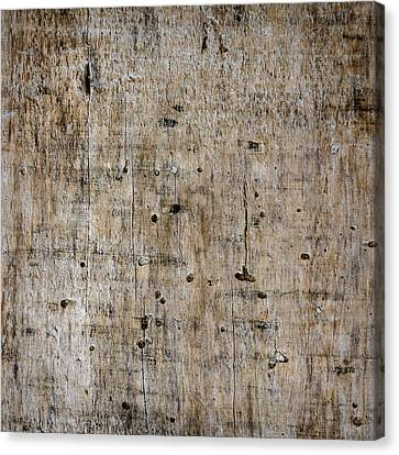 Old Wooden Plank Close-up Canvas Print