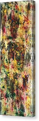 Old Wooden Shutter  Canvas Print