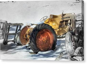 Old Yeller Canvas Print by Donna Kennedy