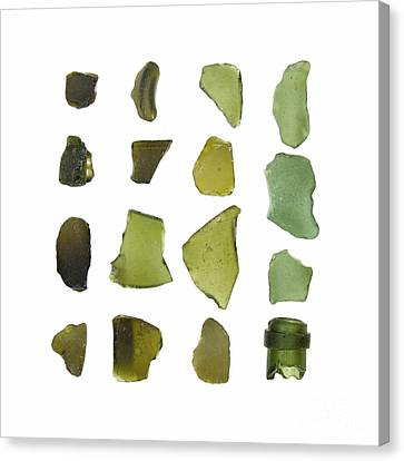 Olive Green Sea Glass Canvas Print by Jennifer Booher