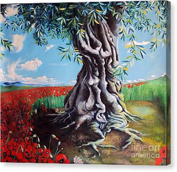 Olive Tree In A Sea Of Poppies Canvas Print by Alessandra Andrisani
