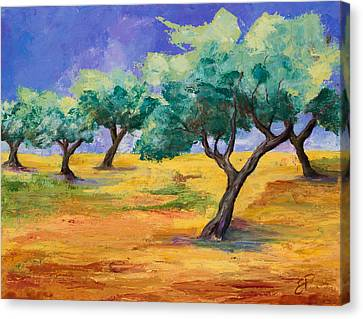 Olive Trees Grove Canvas Print by Elise Palmigiani