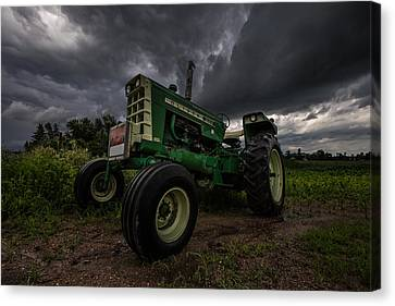 Oliver Canvas Print by Aaron J Groen