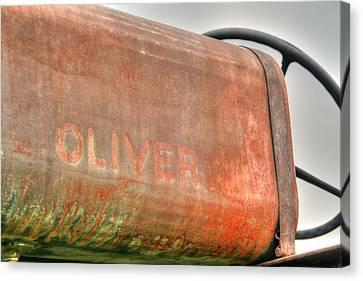 Oliver Canvas Print by Heather Allen