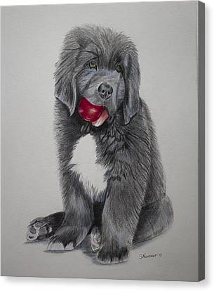 Oliver's Red Ball Canvas Print by Sharon Nummer