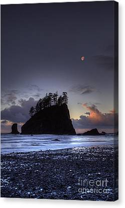 Olympic National Park Canvas Print - Olympic Nationals Moon Stacks by Marco Crupi
