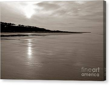 Omaha Beach Canvas Print by Olivier Le Queinec
