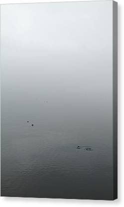 Canvas Print featuring the photograph Ombre by Colleen Williams