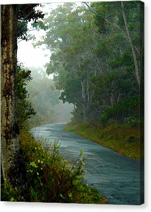 Canvas Print featuring the photograph On A Country Road by Lehua Pekelo-Stearns