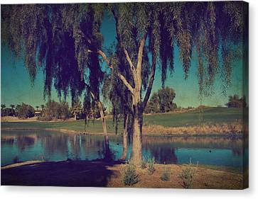 On A Lazy Afternoon Canvas Print by Laurie Search