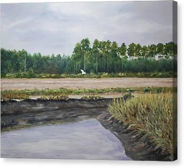On A Tidal Creek Canvas Print