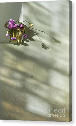On A Wall Canvas Print by Svetlana Sewell