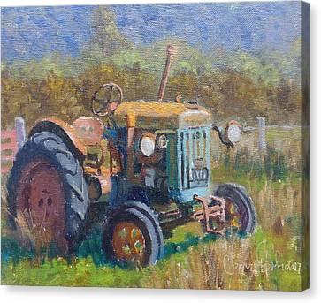 On A Westland Farm  Canvas Print by Terry Perham
