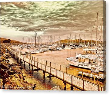 On Any Day Canvas Print by Wallaroo Images