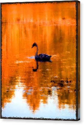 On Golden Pond Canvas Print by Jack Gannon