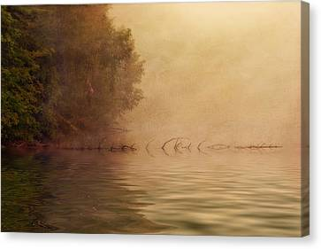 On Golden Pond Canvas Print by Tom Mc Nemar