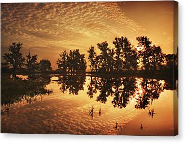 On Golden Ponds Canvas Print by Adrian Campfield