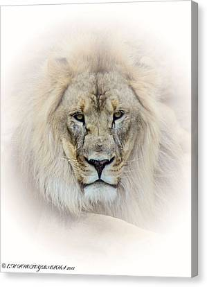 Canvas Print featuring the mixed media On Guard Duty by Elaine Malott