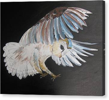 On Silent Wings Canvas Print by Cathy Jacobs