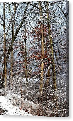 On Such A Winter's Day Canvas Print
