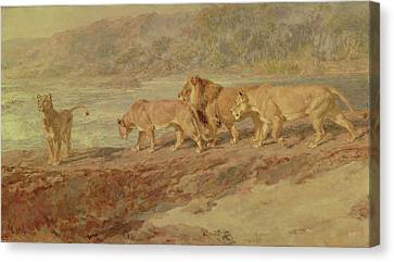 On The Bank Of An African River Canvas Print by Briton Riviere