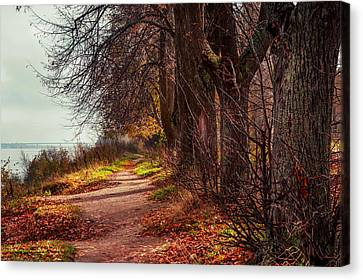 On The Bank Of River Volga Canvas Print by Jenny Rainbow