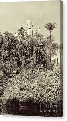 On The Banks Of The Nile Canvas Print by Nigel Fletcher-Jones
