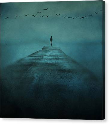 On The Edge Canvas Print