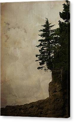 On The Edge Canvas Print by Marilyn Wilson