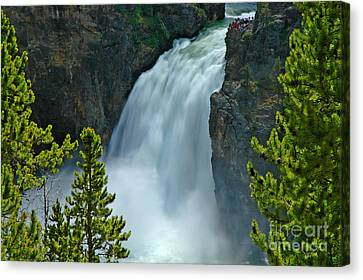 Canvas Print featuring the photograph On The Edge by Nick  Boren