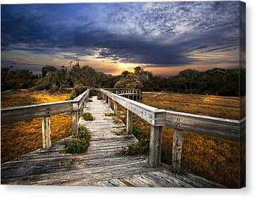 On The Edge Of The Marsh Canvas Print by Debra and Dave Vanderlaan